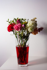 Slightly wilted flowers in red water