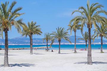 Strand s Arenal - Mallorca