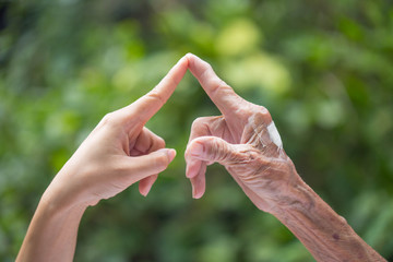 Old and young hands.