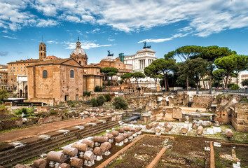 Fototapete - Ruins of the Roman Forum in summer, Rome