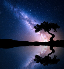 Night scene with Milky Way and old tree on the mountain near the lake with sky with stars reflection in water. Night landcscape with bright milky way, starry sky. Beautiful universe. Space background