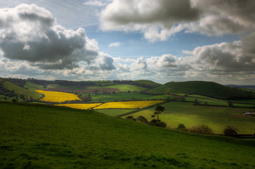 Rolling Hills and Fields in Somerset