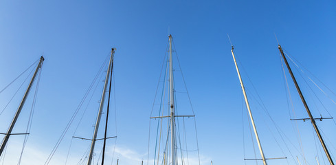 Sailing boat trees under beautiful blue sky