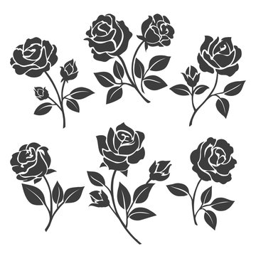 Rose silhouettes vector illustration. Black buds and stems of roses stencils isolated on white background