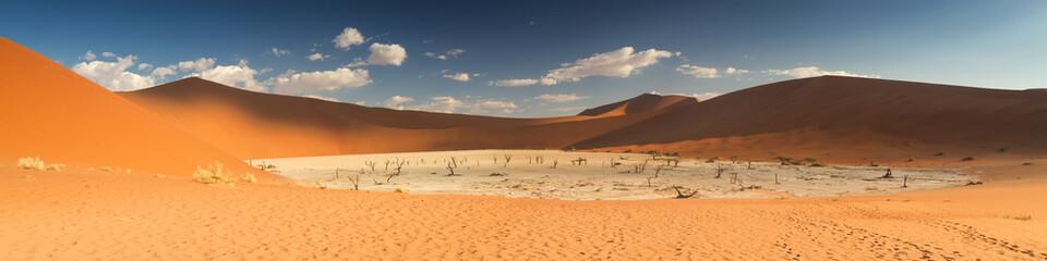 Panorama of the Dead Vlei salt pan