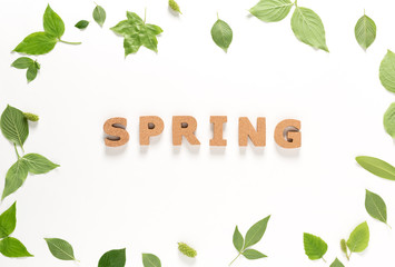 Spring text with green leaves top view