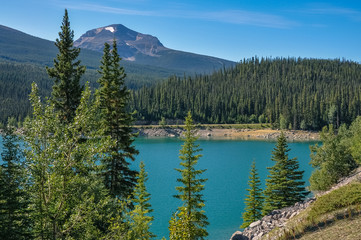View of Medicine Lake through coniferous trees with a mountain peak in the distance in Jasper National Park, Alberta, Canada.