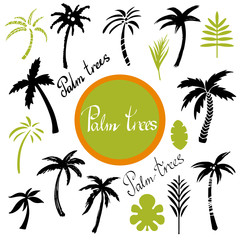 Palm trees and leaves set