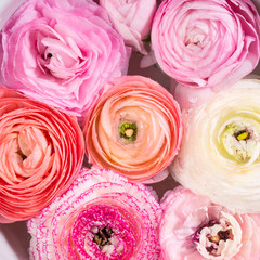 Beautiful pink ranunculus spring background. Woman mother's day wedding. Holiday elegant flower arrangement