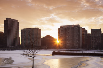 Fotomurales - Winter in Chicago