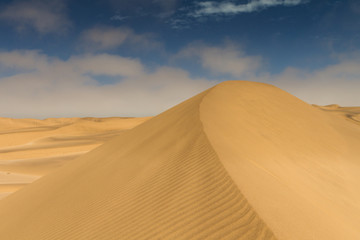On top of a yellow sand dune