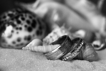 Wedding rings in the sand and different seashells.