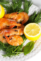 Shrimp with herbs and lemon on a white plate on a white background