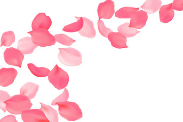 Falling rose petals bright pink blossom. Sakura cherry flying flowers. 3d realistic design. Vector illustration