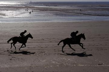 Chevaux et cavaliers galopant sur une plage