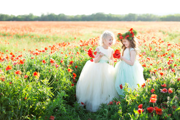 little girl model, childhood, fashion, summer concept - two little girlfriends in white and blue dresses laughing in spring field, hands with bouquets of poppies, on the head is a wreath of poppy