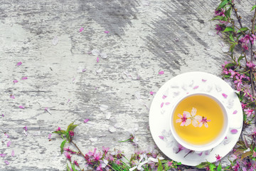 cup of green tea on saucer and branches of cherry blossoming sakura