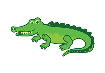 Crocodile vector. Cartoon crocodile. Green crocodile on a white background