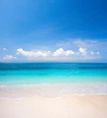 Aluminium Prints Beach beach and tropical sea