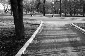 Black and white photo of the city park