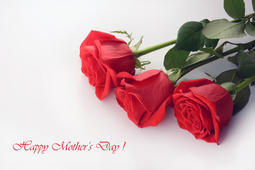 Happy mother's day. Red roses closeup isolated on a white background