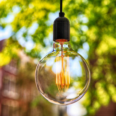 classic Edison light bulb on green leaves background
