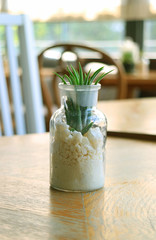 Glass Planter with Wheat Grass on the Wooden Table, Vertical Photo