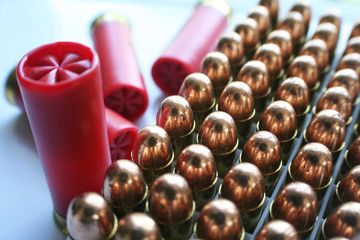 Ammunition ( 12 Gauge Shells ) High Quality