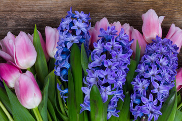 Pink tulips and blue hyacinths fresh flowers on dark aged wooden background close up