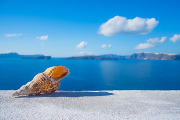 A seashell on a ledge with ocean background, Santorini, Greece