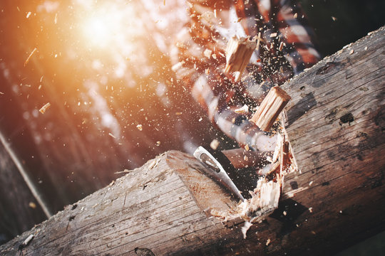 Close-up, lumberjack cuts a big tree in the wood with a sharp ax, the chips splinter in different directions