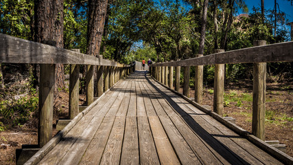 Boardwalk Walking Trail