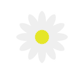 Icon flower daisy