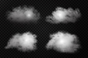 Vector realistic isolated cloud effect on the transparent background. Realistic fog or smoke for decoration.
