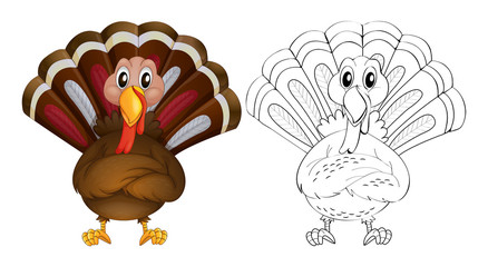 Doodle animal for wild turkey