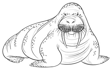 Doodle animal for walrus