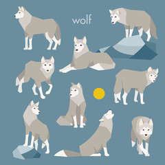 wolf animal vector illustration flat design