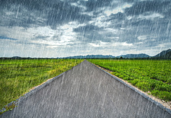 road with falling rain