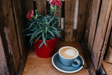 Coffee cup and flower pot