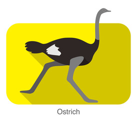 Ostrich running, animal body series, vector
