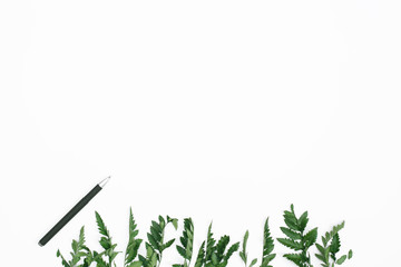 Green leaves and a pen on white background. Space for text, flatlay, top view.