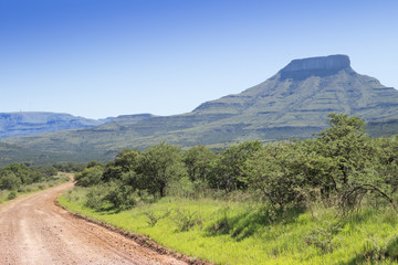 Landscape photo of mountain on a hot summer day with winding brown gravel road through green trees and thorn shrubs - Photo