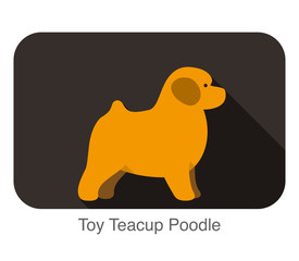 Toy Teacup Poodle, dog standing flat icon design