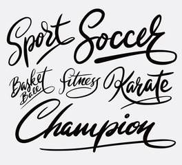 sport and champion hand written typography. Good use for logotype, symbol, cover label, product, brand, poster title or any graphic design you want. Easy to use or change color
