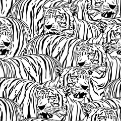 Tiger seamless pattern. Wild life animals. Black and white texture. Illustration