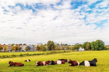 The Dutch Sonsbeek city park in Arnhem