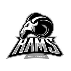 Furious ram sport club vector logo concept isolated on white background.  Premium quality wild ram animal athletic division t-shirt tee print illustration.