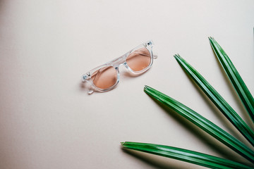 Flat lay of minimal workspace desk eyeglasses with  plant, copy space