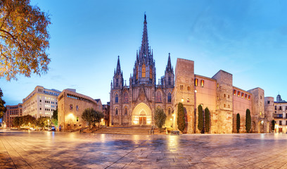 Barcelona, Panorama of Cathedral, Barri Gothic Quarter