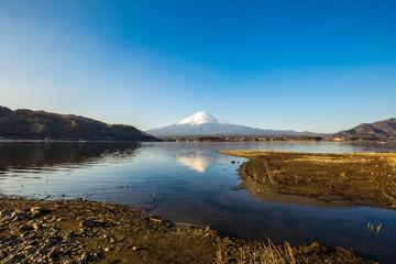 Mountain Fuji and lake kawaguchiko with yellow grass